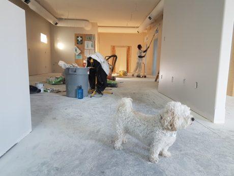 6 Pre-sale Home Improvements
